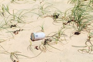 The environment and sustainability on the Great Ocean Road